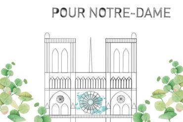 Mobilisons-nous pour Notre-Dame de Paris